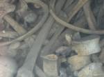 ossuarium eerste wereldoorlog, blauwe meisje